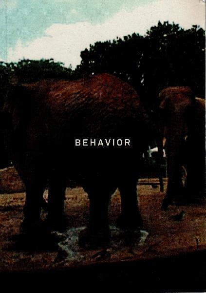 004_andrea-nacach_behavior