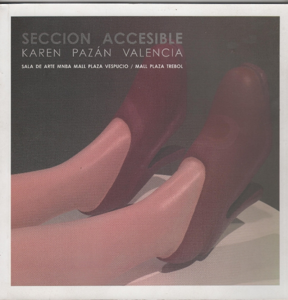 seccion-accesible-001
