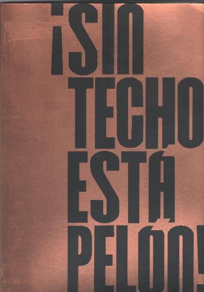 sin-techo-esta-pelon-001